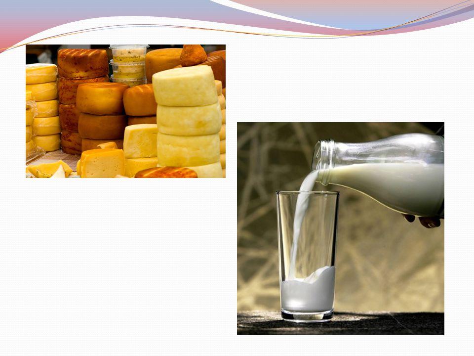 Cukier mlekowy – laktoza Laktoza (łac. lac –