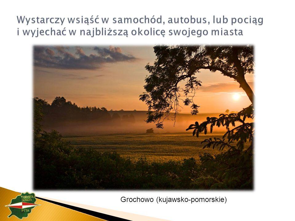 Grochowo (kujawsko-pomorskie)