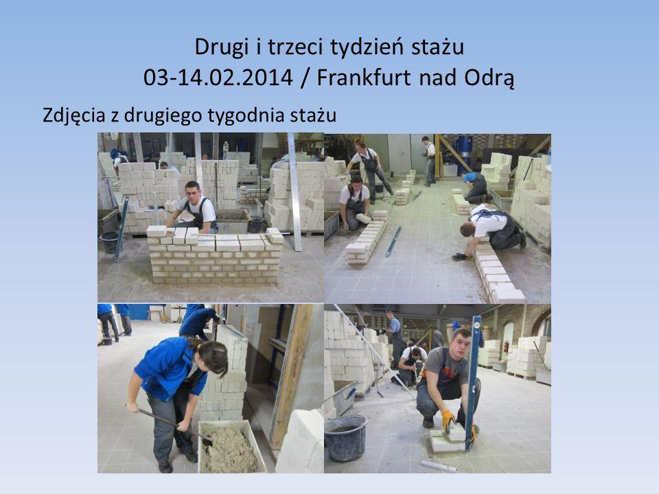 Drugi i trzeci tydzień stażu 03-14.02.2014 / Frankfurt nad Odrą Zdjęcia z drugiego tygodnia stażu
