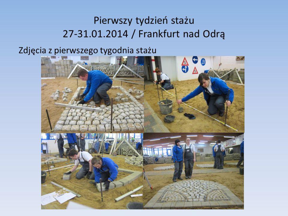 Pierwszy tydzień stażu 27-31.01.2014 / Frankfurt nad Odrą Zdjęcia z pierwszego tygodnia stażu