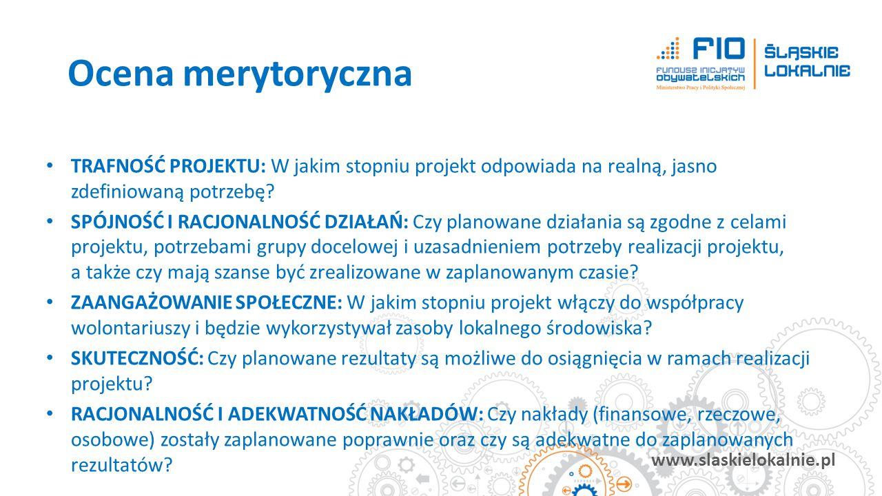 www.slaskielokalnie.pl TRAFNOŚĆ PROJEKTU: W jakim stopniu projekt odpowiada na realną, jasno zdefiniowaną potrzebę? SPÓJNOŚĆ I RACJONALNOŚĆ DZIAŁAŃ: C