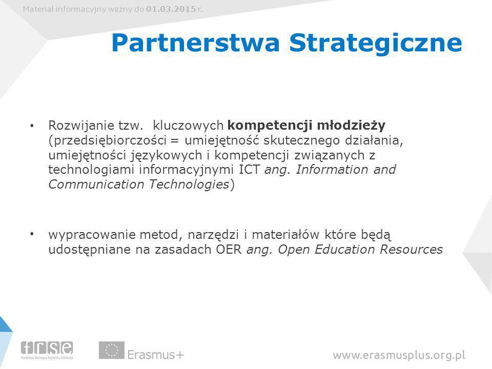 Materiał informacyjny ważny do 01.03.2015 r. Partnerstwa Strategiczne Rozwijanie tzw.