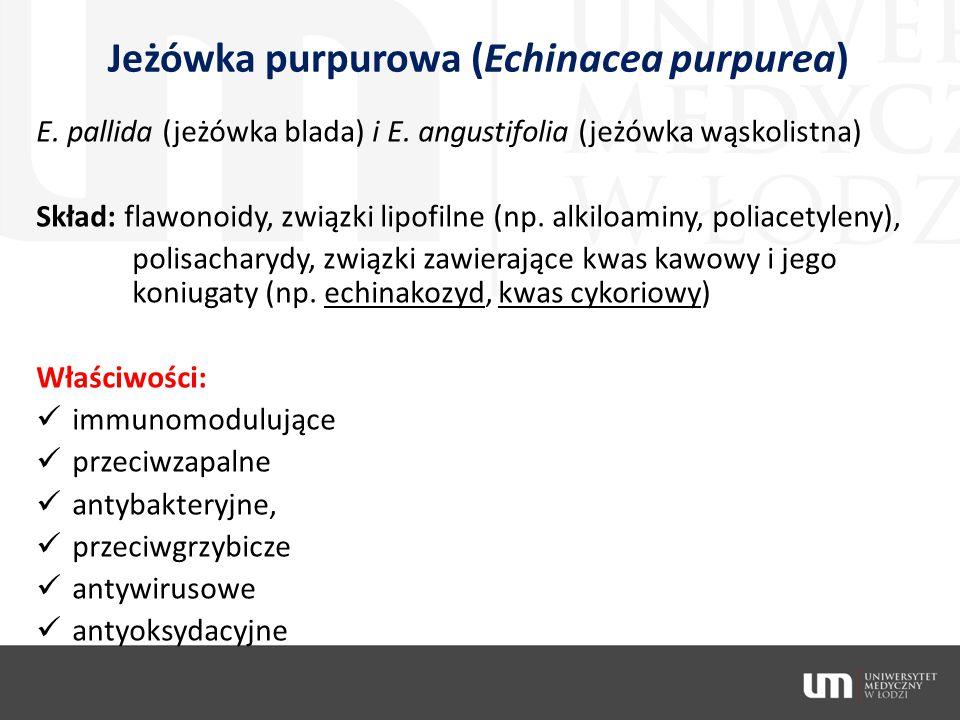 Jeżówka purpurowa (Echinacea purpurea) E. pallida (jeżówka blada) i E. angustifolia (jeżówka wąskolistna) Skład: flawonoidy, związki lipofilne (np. al