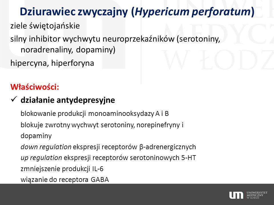 Dziurawiec zwyczajny (Hypericum perforatum) ziele świętojańskie silny inhibitor wychwytu neuroprzekaźników (serotoniny, noradrenaliny, dopaminy) hiper