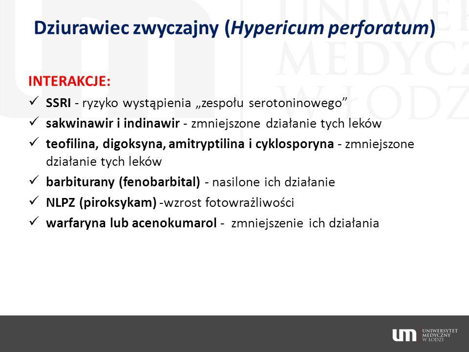 """Dziurawiec zwyczajny (Hypericum perforatum) INTERAKCJE: SSRI - ryzyko wystąpienia """"zespołu serotoninowego"""" sakwinawir i indinawir - zmniejszone działa"""