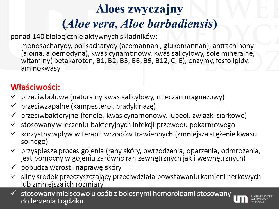 Aloes zwyczajny (Aloe vera, Aloe barbadiensis) ponad 140 biologicznie aktywnych składników: monosacharydy, polisacharydy (acemannan, glukomannan), ant