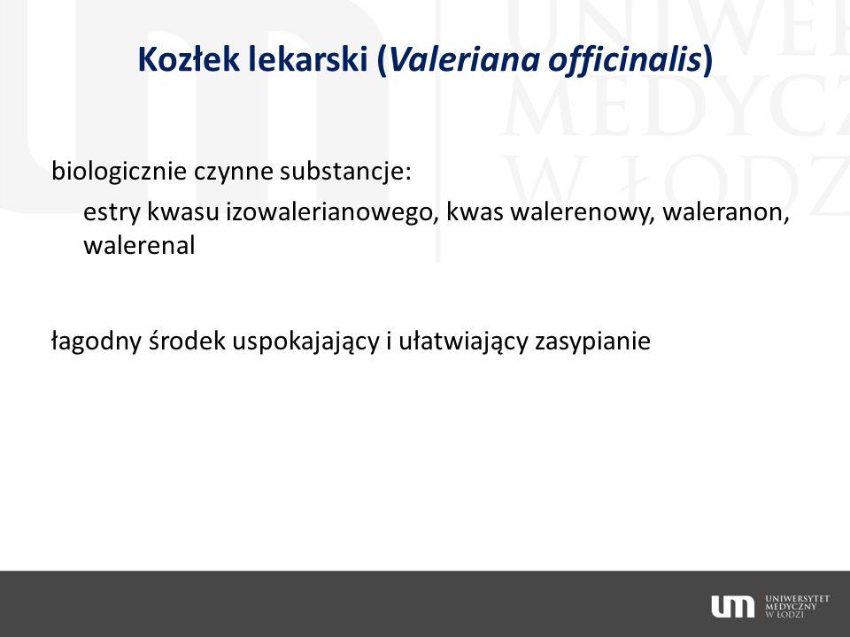 Kozłek lekarski (Valeriana officinalis) biologicznie czynne substancje: estry kwasu izowalerianowego, kwas walerenowy, waleranon, walerenal łagodny śr