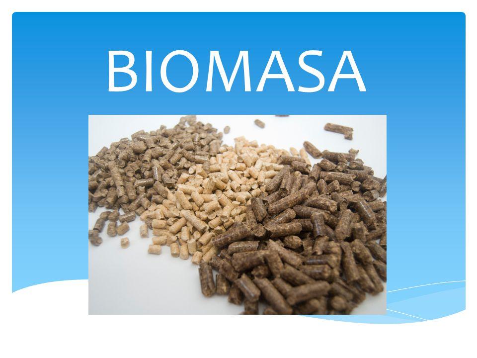 Biomasa – masa materii zawarta w organizmach.