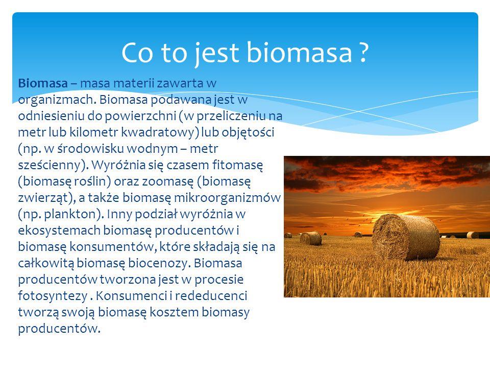 Biomasa – masa materii zawarta w organizmach. Biomasa podawana jest w odniesieniu do powierzchni (w przeliczeniu na metr lub kilometr kwadratowy) lub