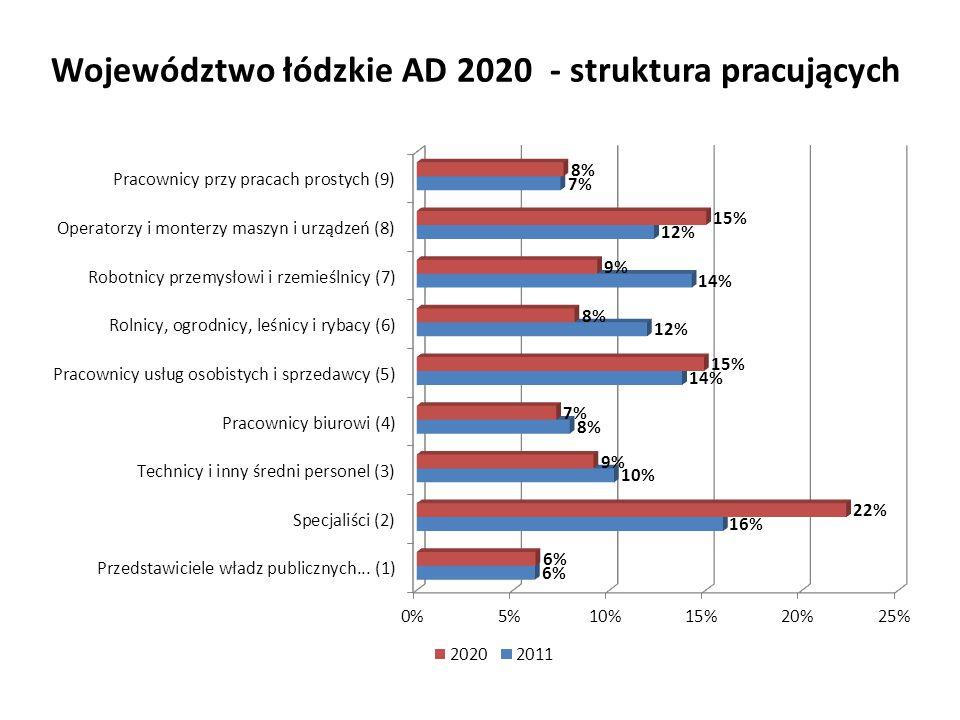 Województwo łódzkie AD 2020 - struktura pracujących