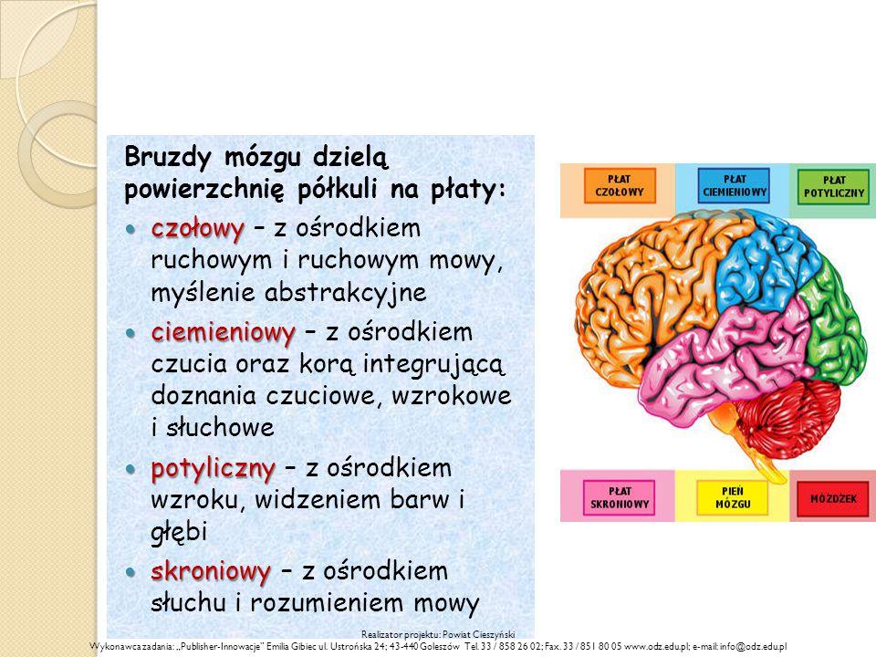 """Bruzdy mózgu dzielą powierzchnię półkuli na płaty: czołowy czołowy – z ośrodkiem ruchowym i ruchowym mowy, myślenie abstrakcyjne ciemieniowy ciemieniowy – z ośrodkiem czucia oraz korą integrującą doznania czuciowe, wzrokowe i słuchowe potyliczny potyliczny – z ośrodkiem wzroku, widzeniem barw i głębi skroniowy skroniowy – z ośrodkiem słuchu i rozumieniem mowy Realizator projektu: Powiat Cieszyński Wykonawca zadania: """"Publisher-Innowacje Emilia Gibiec ul."""