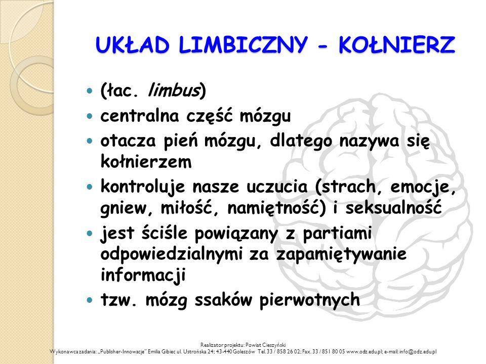 UKŁAD LIMBICZNY - KOŁNIERZ (łac.
