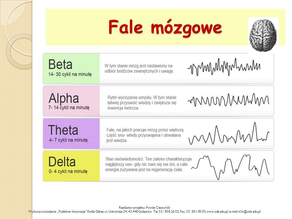 """Fale mózgowe Realizator projektu: Powiat Cieszyński Wykonawca zadania: """"Publisher-Innowacje Emilia Gibiec ul."""