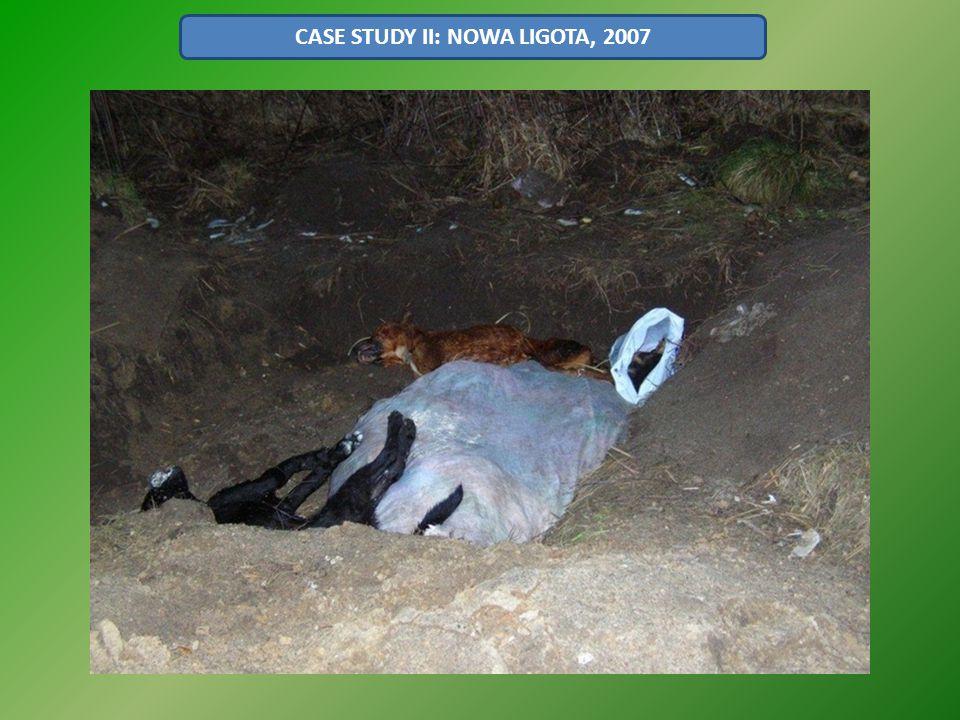 CASE STUDY II: NOWA LIGOTA, 2007