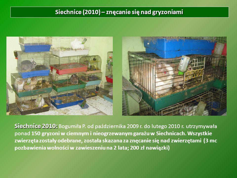 Siechnice (2010) – znęcanie się nad gryzoniami Siechnice 2010: Siechnice 2010: Bogumiła P. od października 2009 r. do lutego 2010 r. utrzymywała ponad
