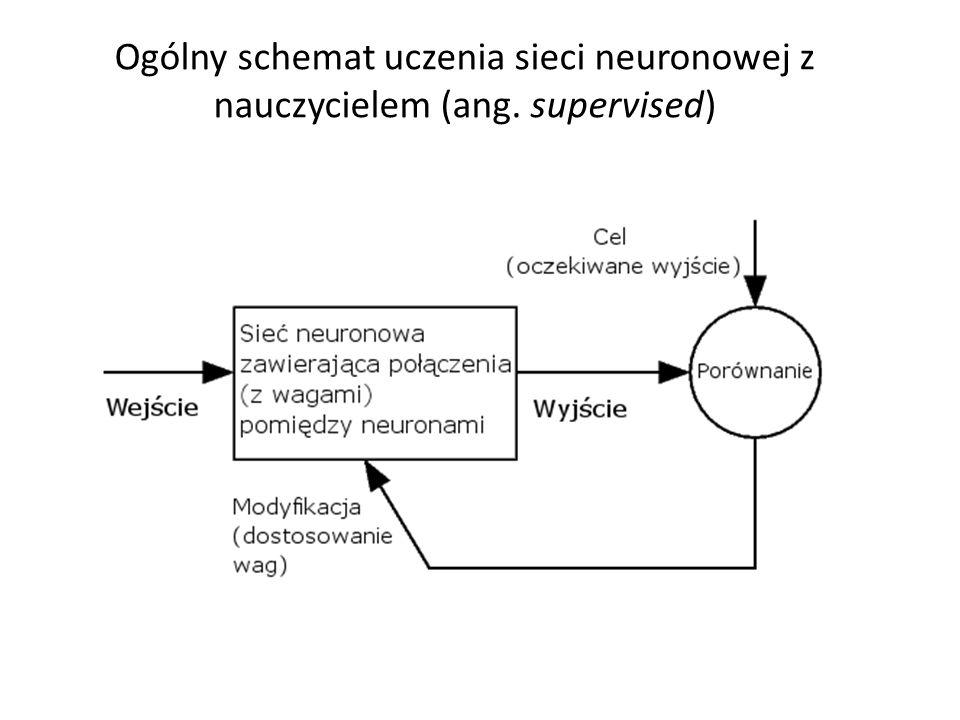 Ogólny schemat uczenia sieci neuronowej z nauczycielem (ang. supervised)