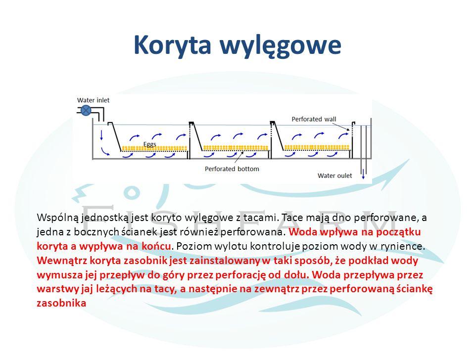 Koryta wylęgowe Wspólną jednostką jest koryto wylęgowe z tacami. Tace mają dno perforowane, a jedna z bocznych ścianek jest również perforowana. Woda