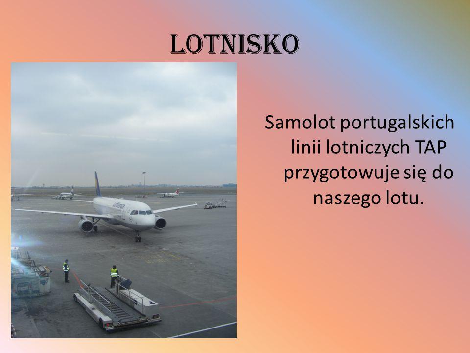 Lotnisko Samolot portugalskich linii lotniczych TAP przygotowuje się do naszego lotu.