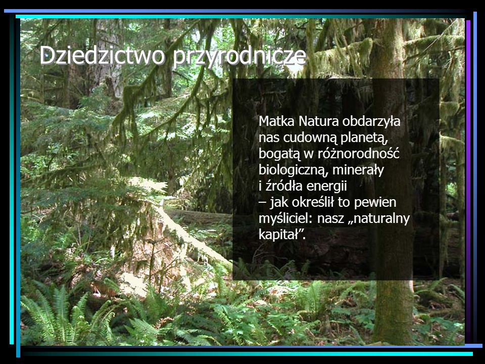 """Dziedzictwo przyrodnicze Matka Natura obdarzyła nas cudowną planetą, bogatą w różnorodność biologiczną, minerały i źródła energii – jak określił to pewien myśliciel: nasz """"naturalny kapitał ."""