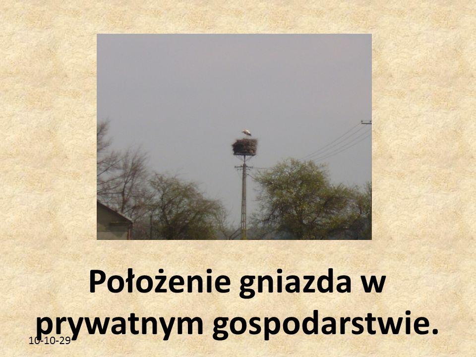 10-10-29 Położenie gniazda w prywatnym gospodarstwie.
