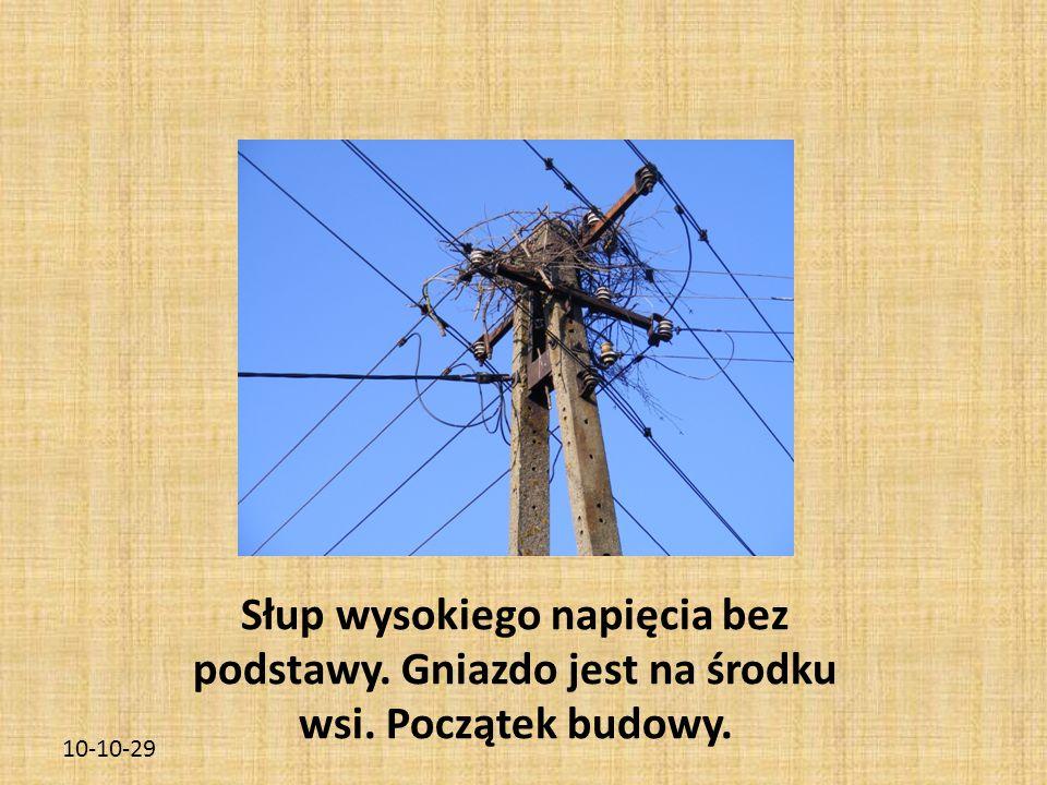 10-10-29 Słup wysokiego napięcia bez podstawy. Gniazdo jest na środku wsi. Początek budowy.