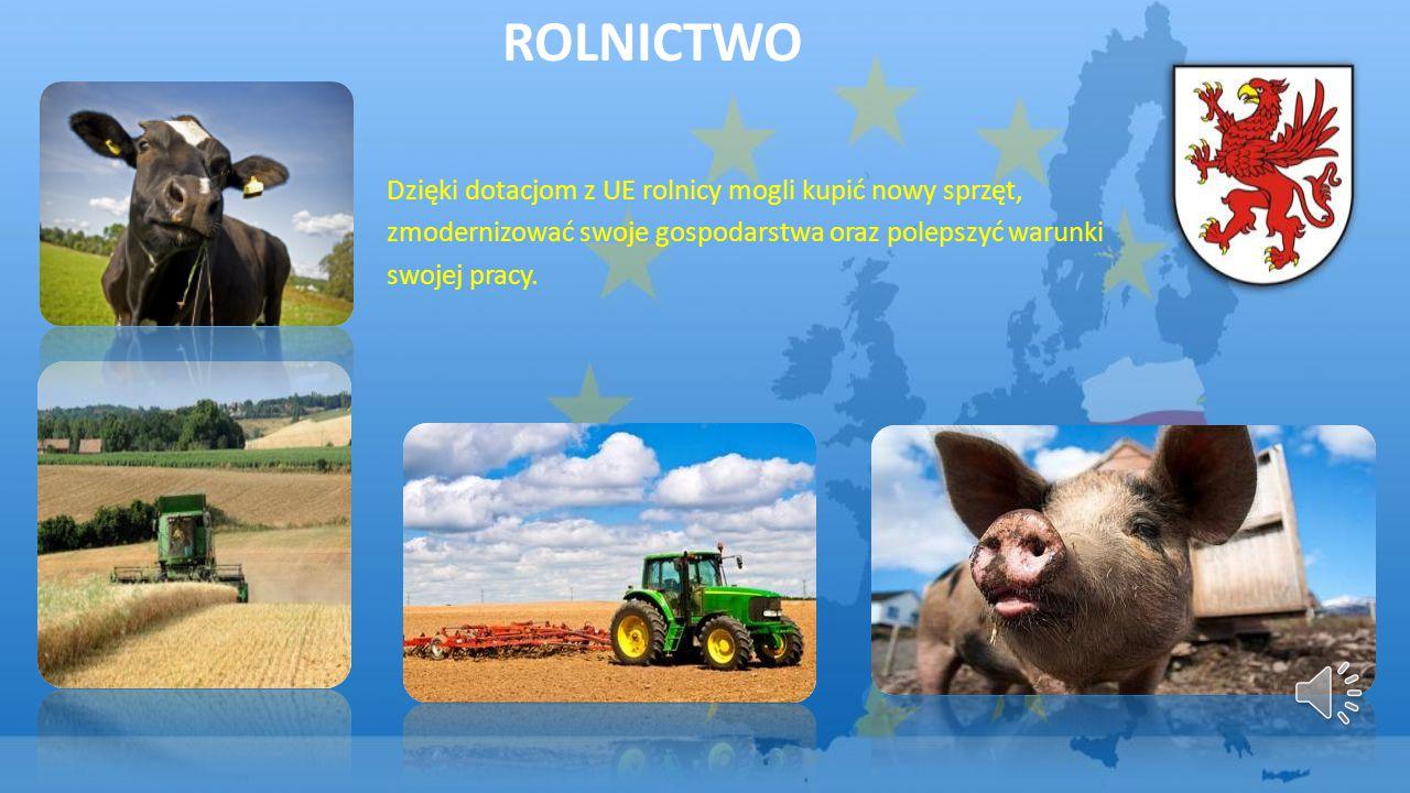 ROLNICTWO Dzięki dotacjom z UE rolnicy mogli kupić nowy sprzęt, zmodernizować swoje gospodarstwa oraz polepszyć warunki swojej pracy.