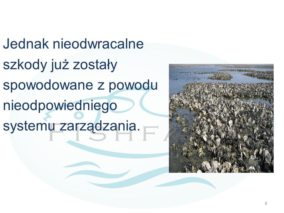 Główne negatywne skutki przypisywane akwakulturze. 9