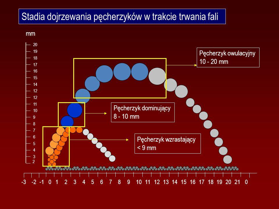 Stadia dojrzewania pęcherzyków w trakcie trwania fali 123456789101112131415161718192021 00 -2-3 2 9 8 7 6 5 4 3 17 10 16 15 14 12 11 18 20 19 mm Pęcherzyk wzrastający < 9 mm Pęcherzyk dominujący 8 - 10 mm Pęcherzyk owulacyjny 10 - 20 mm