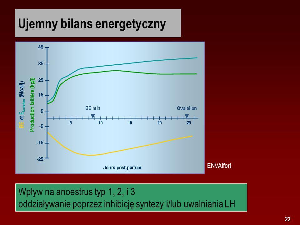 22 Ujemny bilans energetyczny ENVAlfort Wpływ na anoestrus typ 1, 2, i 3 oddziaływanie poprzez inhibicję syntezy i/lub uwalniania LH