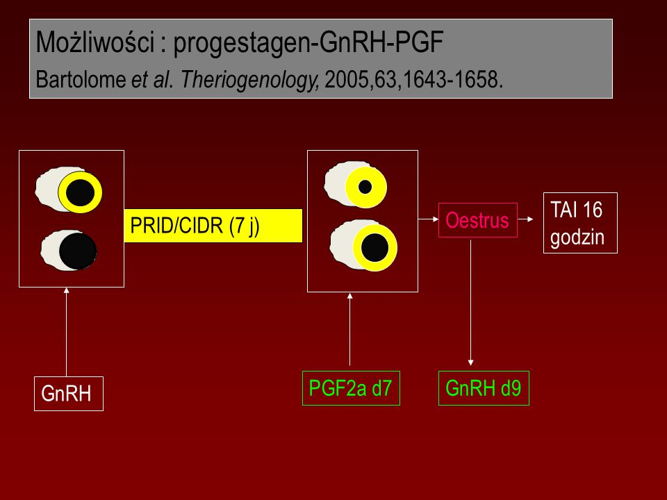 Możliwości : progestagen-GnRH-PGF Bartolome et al.