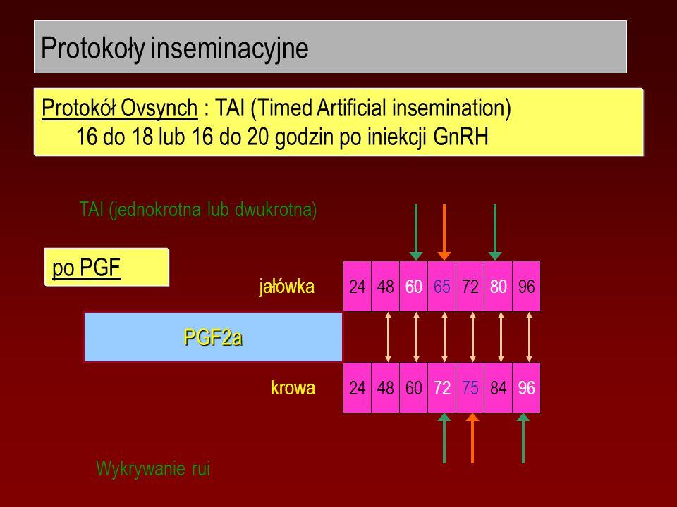 Protokoły inseminacyjne 24486065728096 jałówka 24486072758496 krowa TAI (jednokrotna lub dwukrotna) Wykrywanie rui Protokół Ovsynch : TAI (Timed Artificial insemination) 16 do 18 lub 16 do 20 godzin po iniekcji GnRH PGF2a po PGF