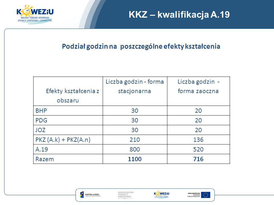 KKZ – kwalifikacja A.19 Efekty kształcenia z obszaru Liczba godzin - forma stacjonarna Liczba godzin - forma zaoczna BHP3020 PDG3020 JOZ3020 PKZ (A.k)