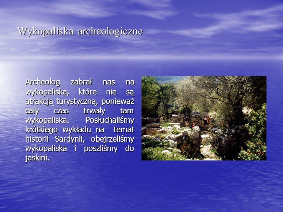 Wykopaliska archeologiczne Archeolog zabrał nas na wykopaliska, które nie są atrakcją turystyczną, ponieważ cały czas trwały tam wykopaliska.