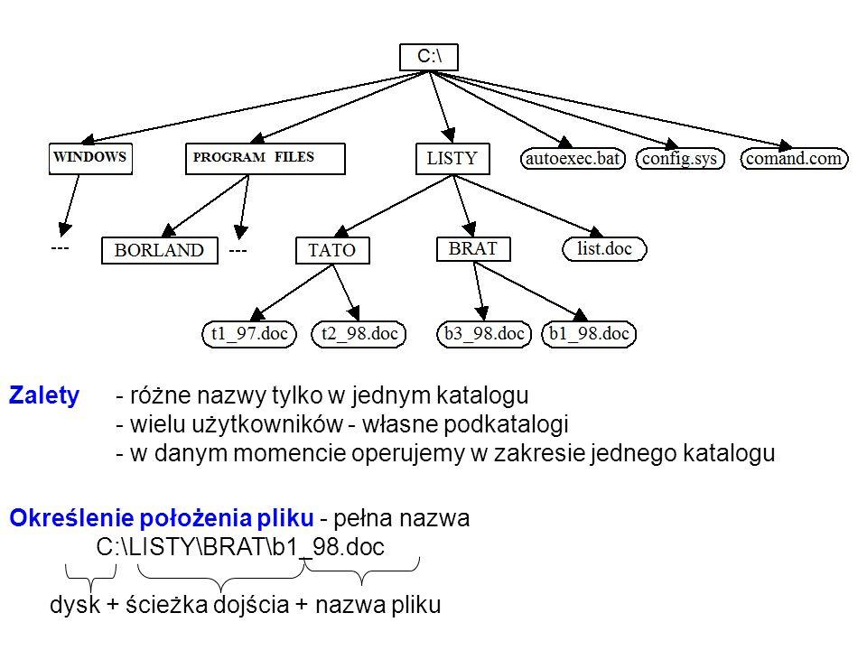 Przykład: 1 znak tekstu1B 1 wiersz tekstu60B 1 strona A4 tekstu25*60 = 1500B = 1,5KB 10 stron15KB1 plik 1 dyskietka 1,44MB960 stron A4= 10 książek (10