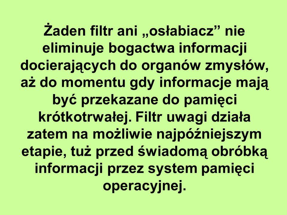 """Żaden filtr ani """"osłabiacz nie eliminuje bogactwa informacji docierających do organów zmysłów, aż do momentu gdy informacje mają być przekazane do pamięci krótkotrwałej."""