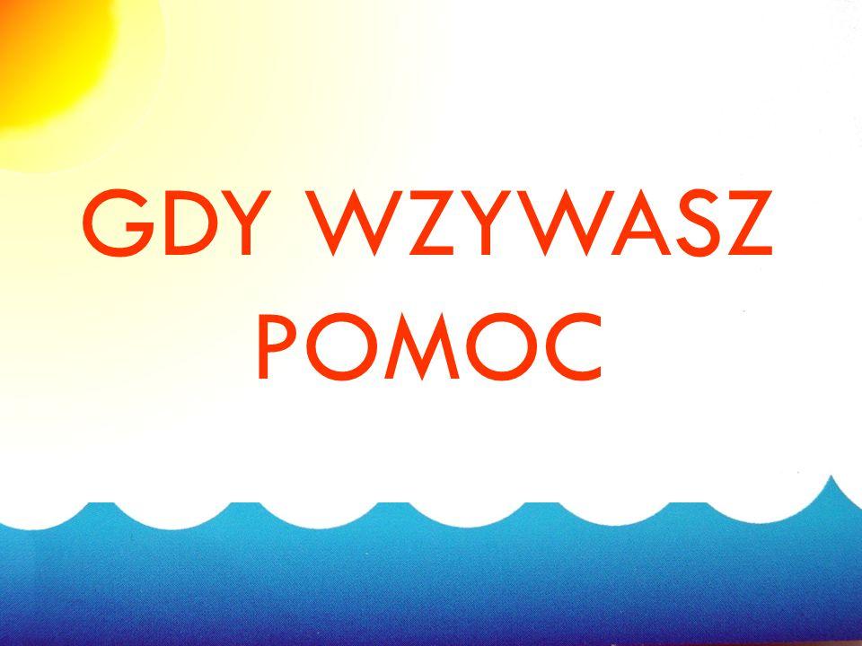 Oznaczenie niebezpiecznych miejsc nad wodą 15 W 2009 roku z inicjatywy Samorządu Województwa Mazowieckiego oraz Mazowieckiej KomendyWojewódzkiej Polic