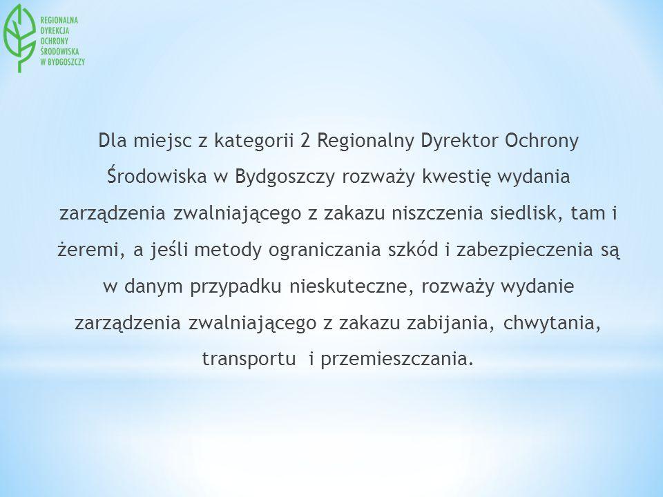 Dla miejsc z kategorii 2 Regionalny Dyrektor Ochrony Środowiska w Bydgoszczy rozważy kwestię wydania zarządzenia zwalniającego z zakazu niszczenia sie