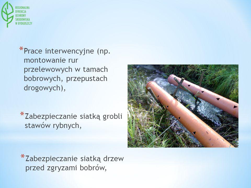* Prace interwencyjne (np. montowanie rur przelewowych w tamach bobrowych, przepustach drogowych), * Zabezpieczanie siatką grobli stawów rybnych, * Za