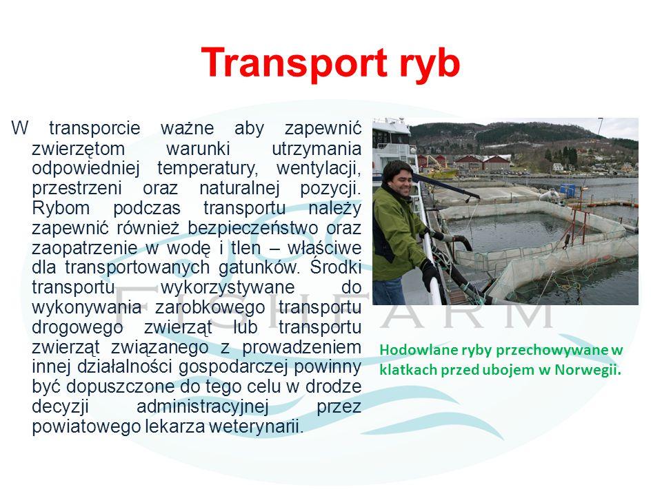 Transport ryb W transporcie ważne aby zapewnić zwierzętom warunki utrzymania odpowiedniej temperatury, wentylacji, przestrzeni oraz naturalnej pozycji.