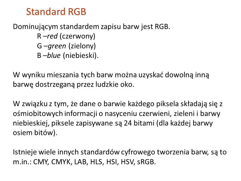 Dominującym standardem zapisu barw jest RGB.