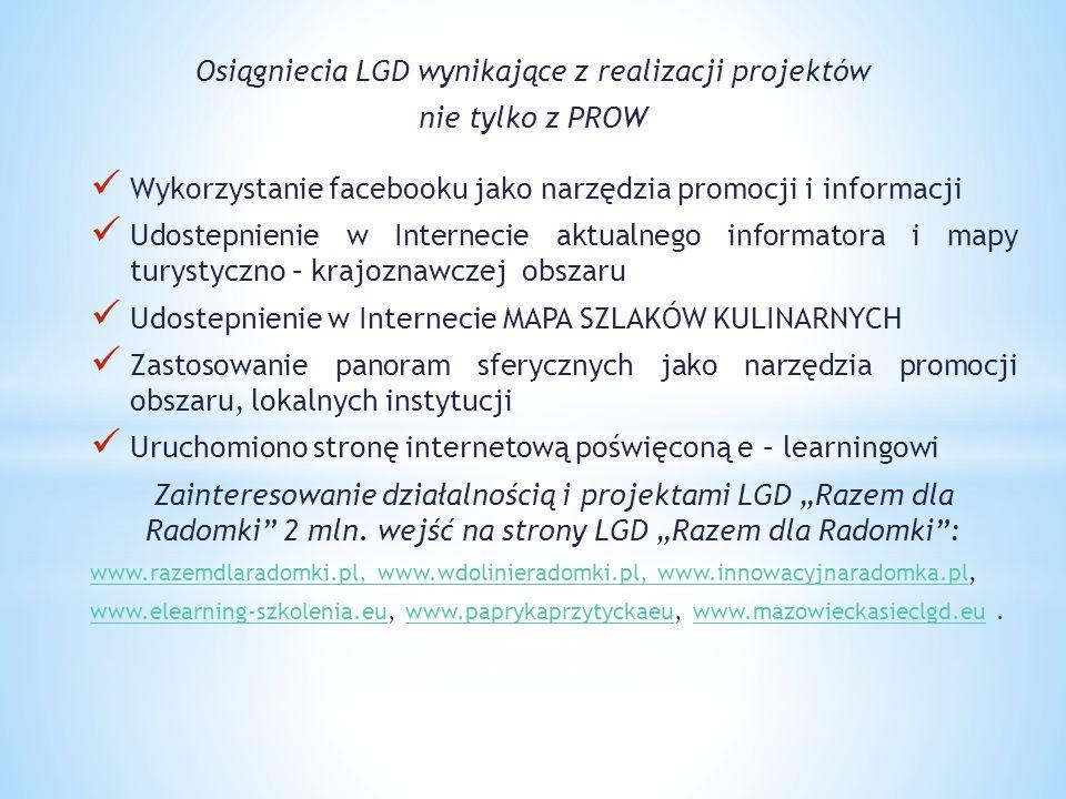 Osiągniecia LGD wynikające z realizacji projektów nie tylko z PROW Wykorzystanie facebooku jako narzędzia promocji i informacji Udostepnienie w Intern