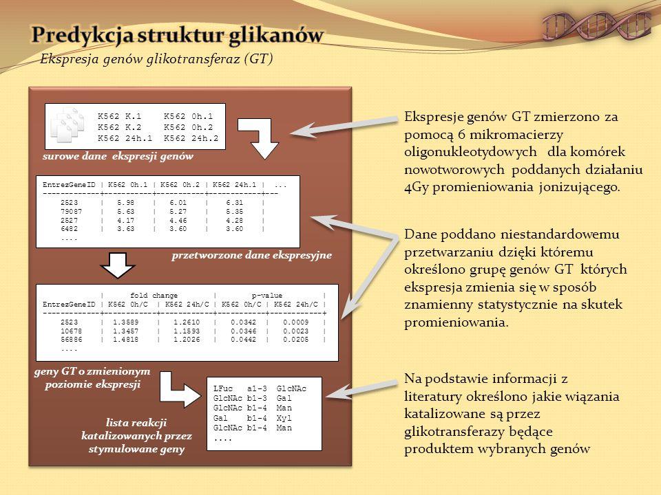 EntrezGeneID | K562 0h.1 | K562 0h.2 | K562 24h.1 |...