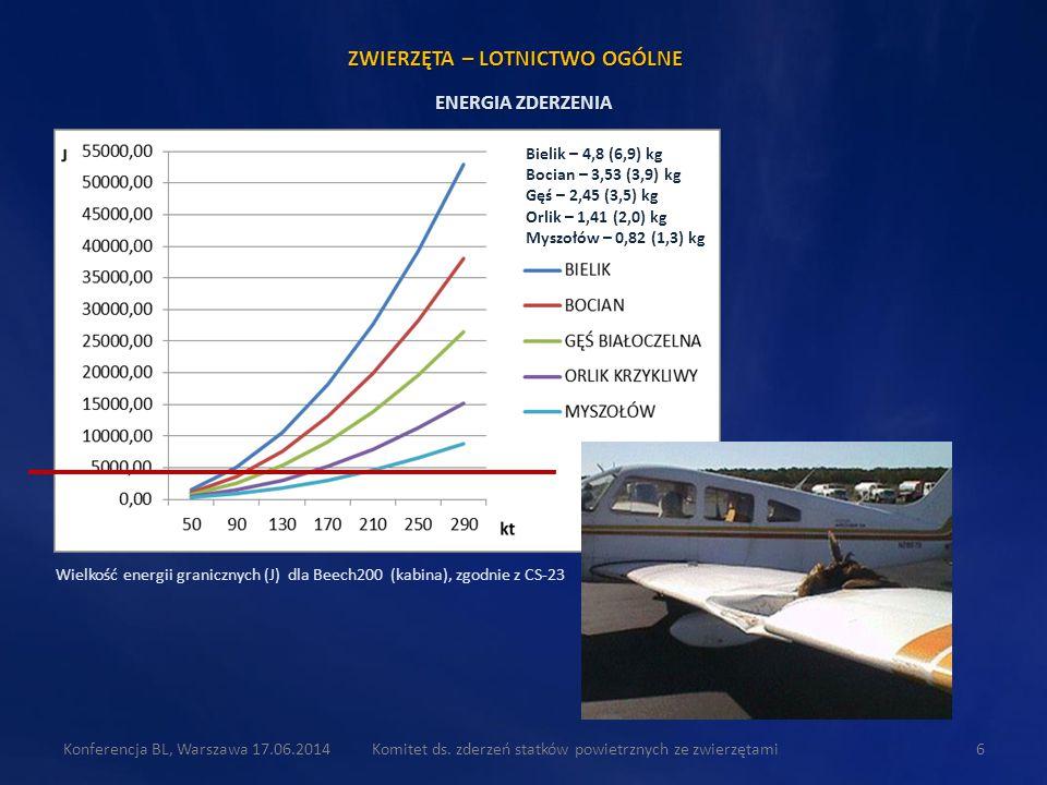 Wielkość energii granicznych (J) dla Beech200 (kabina), zgodnie z CS-23 Komitet ds. zderzeń statków powietrznych ze zwierzętami6 Bielik – 4,8 (6,9) kg