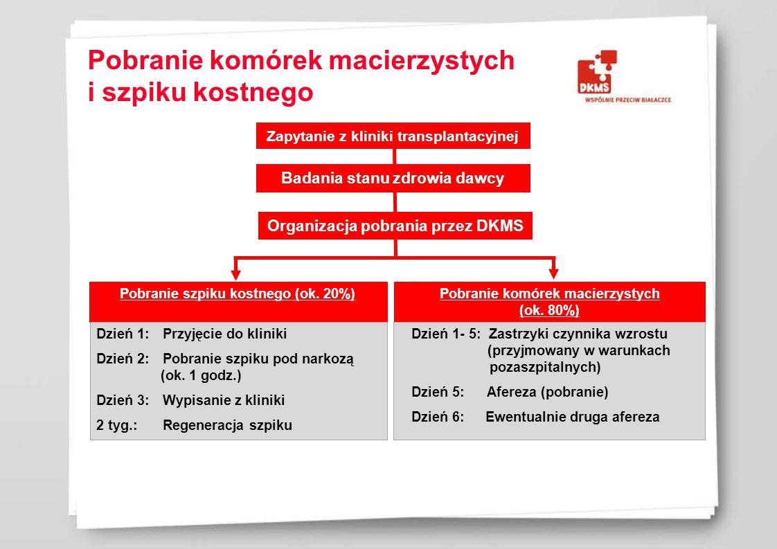 Zapytanie z kliniki transplantacyjnej Badania stanu zdrowia dawcy Organizacja pobrania przez DKMS Pobranie szpiku kostnego (ok.