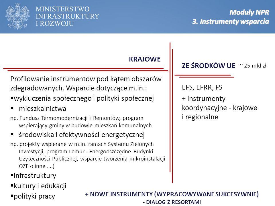 ZE ŚRODKÓW UE EFS, EFRR, FS + instrumenty koordynacyjne - krajowe i regionalne + NOWE INSTRUMENTY (WYPRACOWYWANE SUKCESYWNIE) - DIALOG Z RESORTAMI Pro