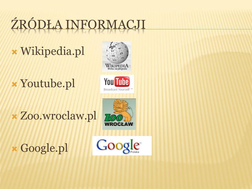  Wikipedia.pl  Youtube.pl  Zoo.wroclaw.pl  Google.pl