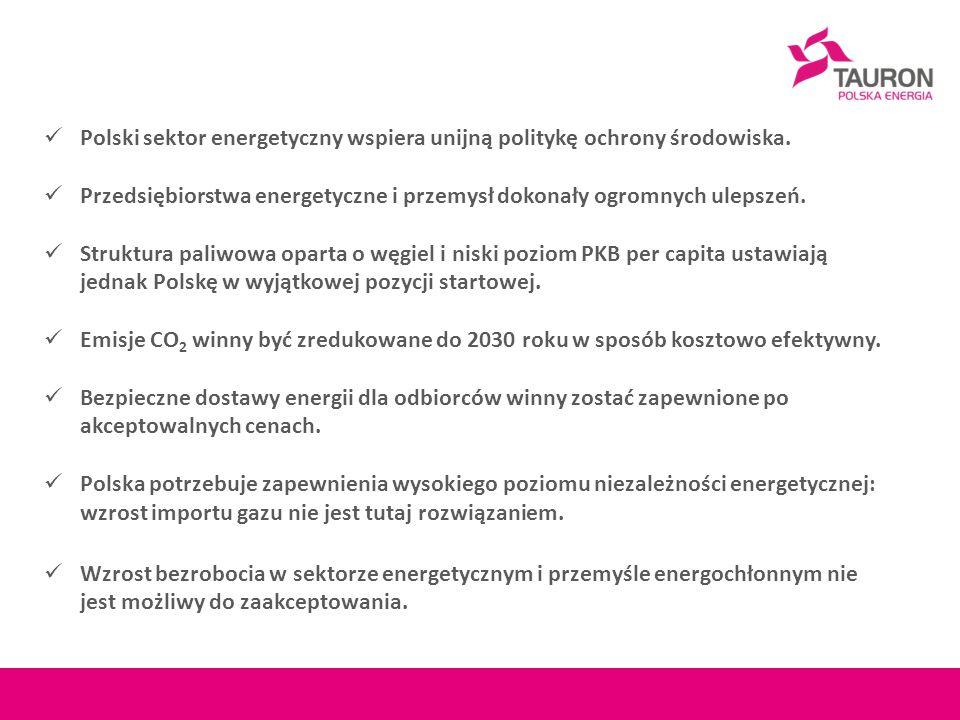 Polski sektor energetyczny wspiera unijną politykę ochrony środowiska. Przedsiębiorstwa energetyczne i przemysł dokonały ogromnych ulepszeń. Struktura