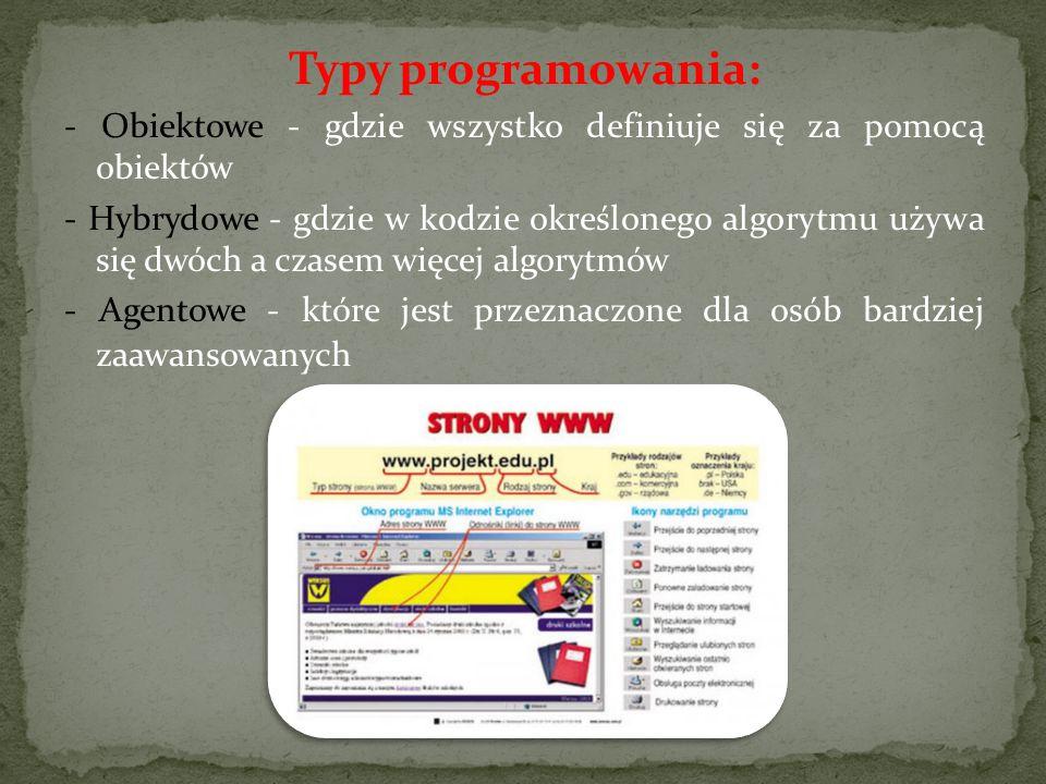 Typy programowania: - Obiektowe - gdzie wszystko definiuje się za pomocą obiektów - Hybrydowe - gdzie w kodzie określonego algorytmu używa się dwóch a czasem więcej algorytmów - Agentowe - które jest przeznaczone dla osób bardziej zaawansowanych