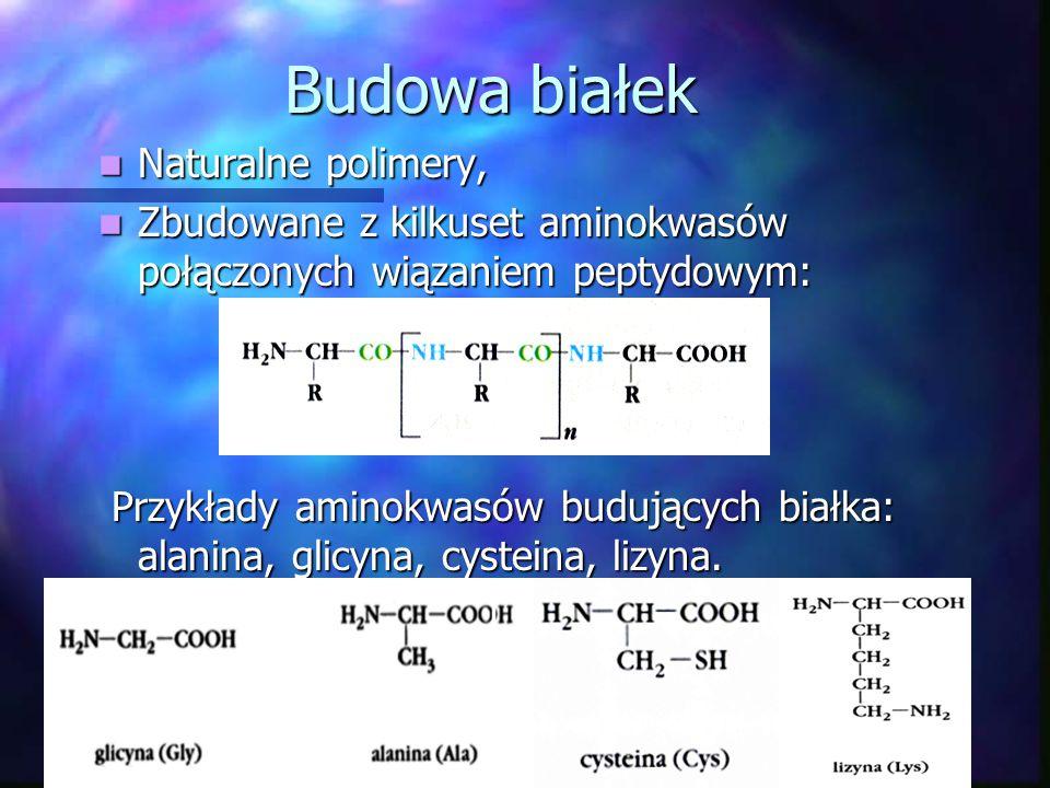 Białko jako rodzaj substancji chemicznej cd.: CHLOROPLASTYNA- zielony barwnik; CHLOROPLASTYNA- zielony barwnik; ADRENALINA- hormon stresu; ADRENALINA-