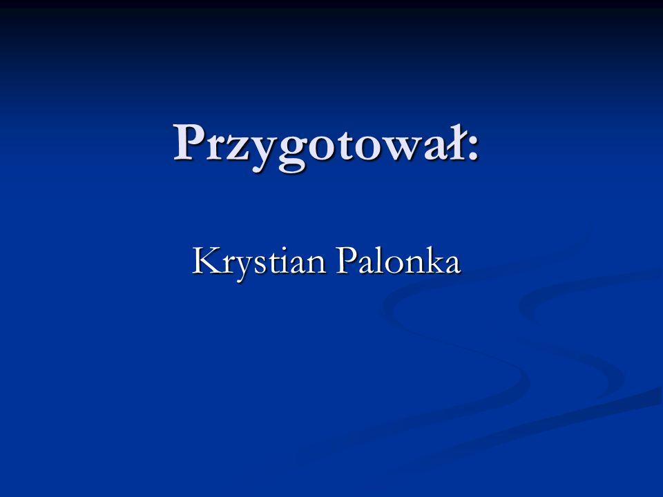 Przygotował: Krystian Palonka